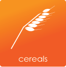 Cereals Learning Videos