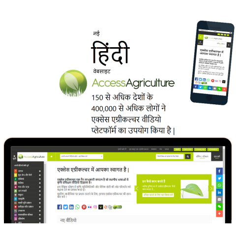 नई हिंदी वेबसाइट