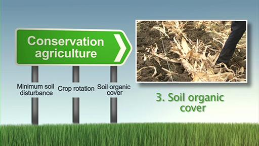 चिरस्थायी भूमि प्रबंधन 12-संरक्षण कृषि